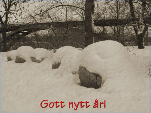 Gott-Nytt-År-2012-PC240011d